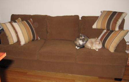 couch-2.jpg